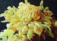 Yellow Crysanthemum - Watercolour And Ink Paintings - By Julia Patience, Realism Painting Artist