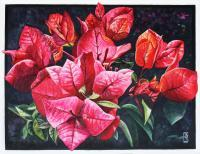 Flower Paintings - Bougainvillea Spectablis - Watercolour And Ink