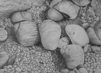 Scandinavian Light - Jaeren Beach Detail - Pencil