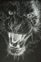 Wrath - Colored Pencil Drawings - By Barbara Keith, Realism Drawing Artist