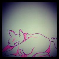 Sketch - Cat - Pen