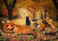 Cats - Cats In Autumn - Digital