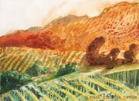 Landscape - Vineyard II - Watercolor On Paper