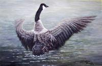 Dancing Canada Goose - Acrylic On Canvas Paintings - By Judy Kirouac, Realism Painting Artist
