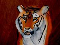 Amateurpainter - Tiger - Oil On Canvas