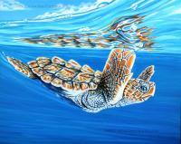 First Dive - Acrylic On Canvas Board Paintings - By Jane Girardot, Realism Painting Artist