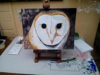 Wildlife - Barn Owl - Watercolour