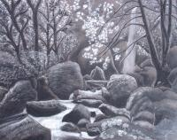 Black And White - Serenity2 - Charcoal And Pastel