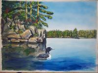Available - Lone Loon - Watercolor