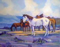Colorado Wildlife - Mustangs - Acrylic On Canvas
