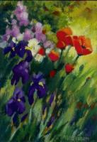 Floral - Field Poppies - Pastel