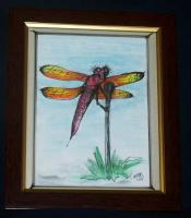Insects - Clown Dragonfly - Watercolors