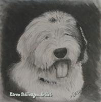 Charcoal Drawings - Lola - Charcoal
