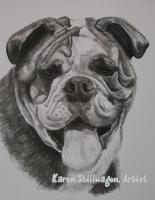 Charcoal Drawings - Frank - Charcoal