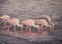 Ornithological Impressionism - White Ibis - Watercolor