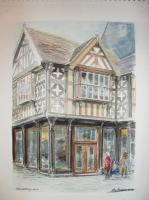 Fine Art - Shrewsbury - Watercolour