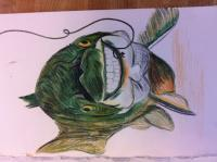 Happy Trout - Colored Pencil Drawings - By Karlee Patton, Illustration Drawing Artist