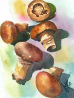 Still Life - Magic Mushrooms - Watercolor