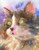 Animals - Whiskers - Watercolor