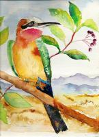 South African Bird Life - Bee Eater Bird - Water Colour