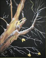 Work Series - Winter Tree - Acrylic On Canvass