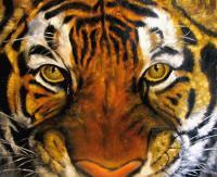 Animals - Tigers Mask Oil Painting - Oil Canvas