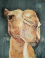 Animals - Humphry - Pastel