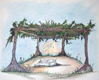 Illustrations Book - Arbor Of Peace - Color Pencil  Paper