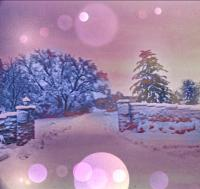 Photography - Snow Before The New Year - Digital Arts