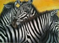 Zebra Cluster - Colored Pencil Drawings - By Carl Parker, Realist Drawing Artist