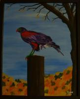Birds - Purple Hawk - Acrylic