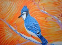 Other Wildlife - Bluejay 2016 - Acrylic