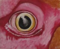 Chicken Eye - Acrylic Paintings - By Matthew J Rice, Acrylic  Pastels Painting Artist