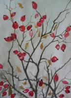 Watercolor - Rosehip - Watercolor