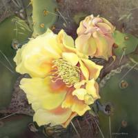 Cactus Flower - Acrylic And Mixed Media Paintings - By Carolyn Ritter, Realistic Impressionism Painting Artist