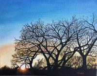 Landscape Oil Paintings - Bosque Winter Sunset - Oil Paint