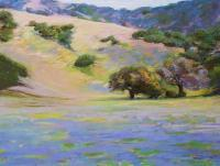 Landscapes - California Lupine - Pastel