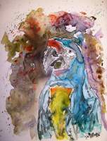 Macaw Parrot - Water Color Paintings - By Derek Mccrea, Impressionism Painting Artist