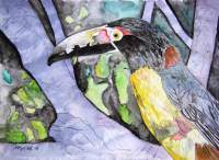 Art Of Derek Mccrea - Toucan Bird - Water Color