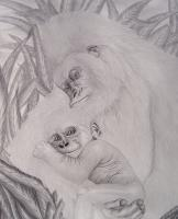 Animals - My Daddys Bigger Than Your Daddy - Graphite Pencils