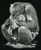 A Tender Moment - Scratchboard Other - By Karen Hull, Realism Other Artist