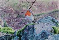 Miniature Art - Robin On A Rock - Watercolours On Watercolour Ca