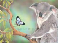 A Kiss For Koala - Coloured Pencils On Drafting F Drawings - By Karen Hull, Illustrative Drawing Artist