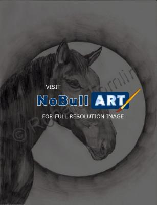 Animals - Dark Horse - Pencil And Paper