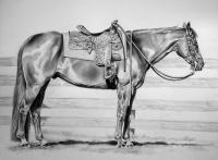 Equine - Ready And Waiting - Graphite