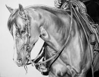 Trail Time - Graphite Drawings - By Maria Dangelo, Realistic Drawing Artist