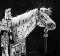 Equine - Pride Of The Nez Perce - Graphite