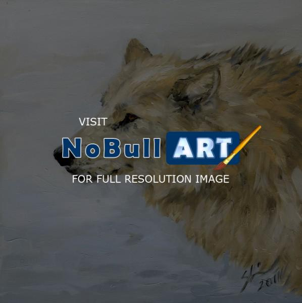 Wildlife - White Wolf In Profile - Oil