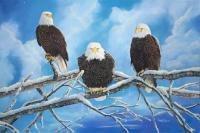 Eagles Warming In The Sun - Oil Paintings - By Laura Curtin, Wildlife Art Painting Artist