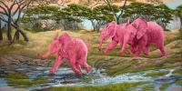 A Splash Of Pink - Oil Paintings - By Laura Curtin, Wildlife Art Painting Artist